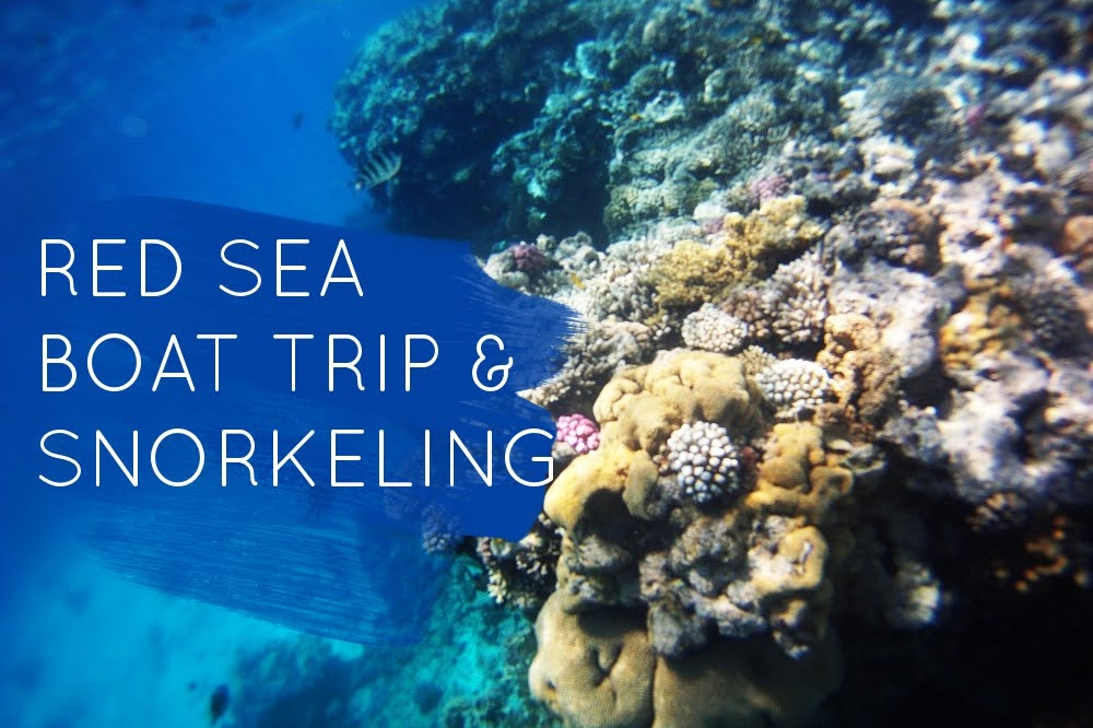 Video: Red Sea Boat Trip & Snokeling